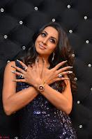 Sanjjana at her best expressions as aggresive cat   beautiful Actress Sanjjana Exclusive Pics 020.JPG