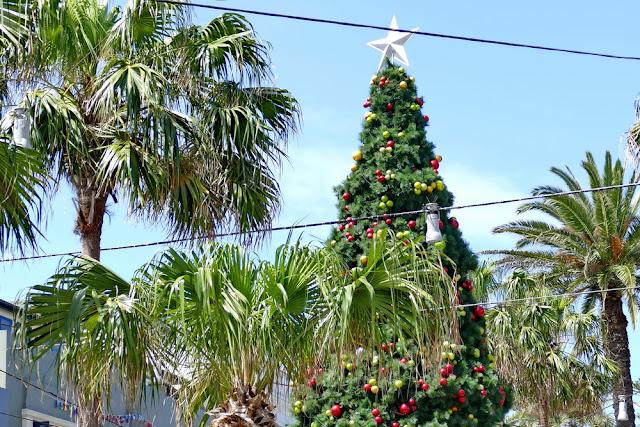 Manly, Corso, Shopping, Einkaufen, Palmen, Fussgängerzone, Weihnachtlich, Weihnachtsbaum