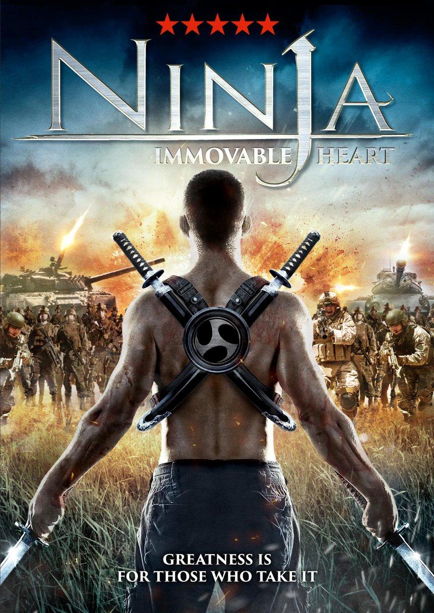 Ninja Immovable Heart 2014 Dual Audio Hindi 1080p BluRay ESubs