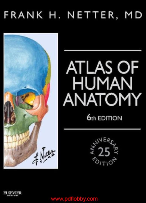 Fantastisch Human Anatomy Marieb 7th Edition Pdf Bilder ...