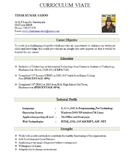 Fresher Resume Format For Mca Student Best Resume Format For Freshers