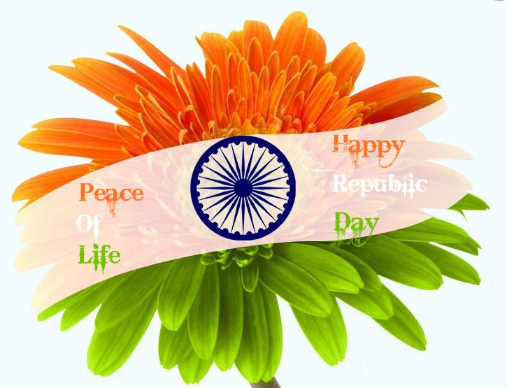 Flower With Indian Flag Hd: Peace Of Life