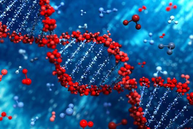 DNA Manusia Selamat Di Ruang Angkasa, Inikah Bukti Bahwa Kita Bukan Berasal Dari Bumi?