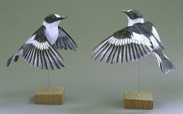 3d birds art