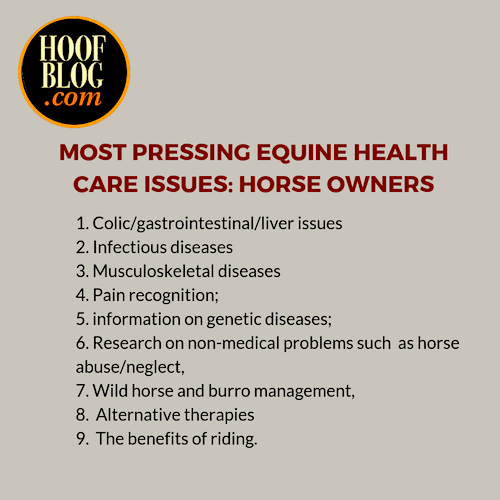 equine research priorities for horse owners
