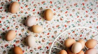 Κι όμως τα τσόφλια των αυγών τρώγονται
