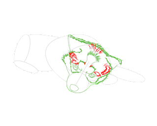 HOW-TO-DRAW-A-BABYHUSKY8