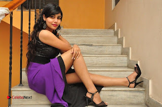 Telugu Actress Rachana Smith Stills at Money is Honey Audio Release  0115.jpg