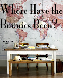 Where Have the Bunnies Been?