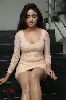 Telugu Actress Model Sony Charishta Stills in Short Dress at Rapture 2017 Grand Logo Launch  0161.JPG