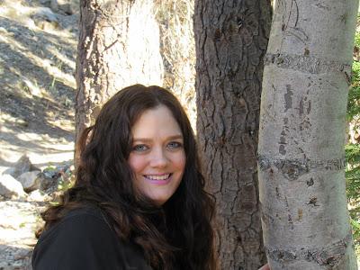 vaughn the road again northern california travel adventures guide romance author rachelle vaughn