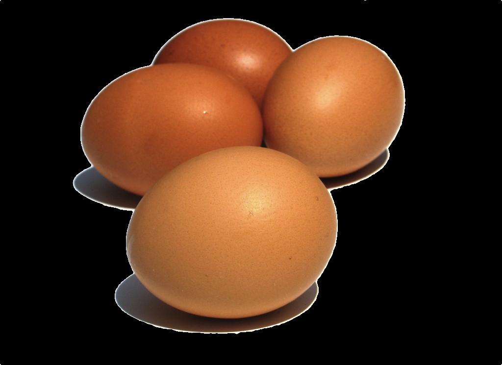 Dos polluelos y co