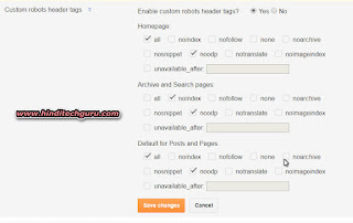 custom robots header tags setting