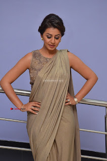 Nikki Galrani in Saree 013.JPG
