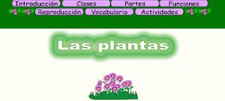 http://capitaneducacion.blogspot.com.es/2017/11/3-primaria-ciencias-de-la-naturaleza_9.html