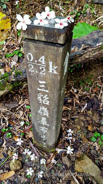 taipei hike