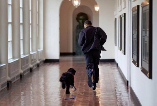 stati-uniti-ultimi-tre-mesi-barack-obama-casa-bianca-immagini-fotografo-pete-souza-racconto-suoi-otto-anni-presidente