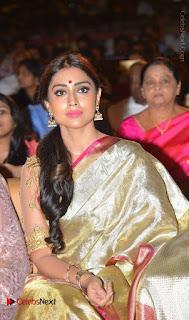 Actress Shriya Saran New Images in Silk Saree at Gautamiputra Satakarni Audio Launch  0027.jpg