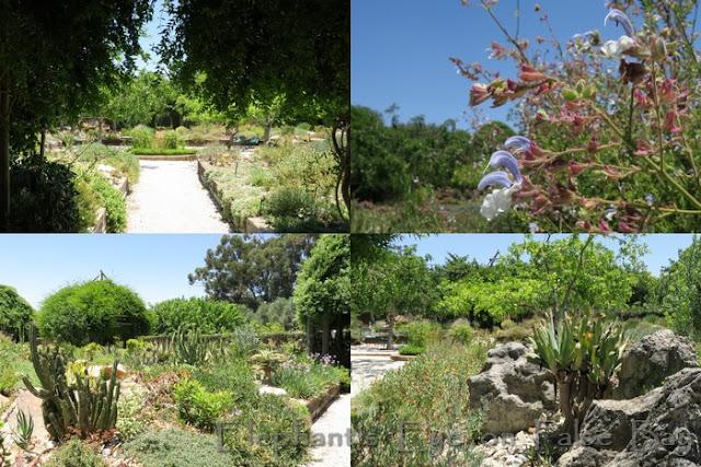 Garden of the San