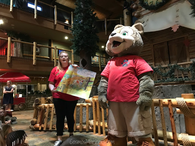 What to Do at Great Wolf Lodge with a Preschooler | CosmosMariners.com