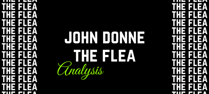 Analysis of John Donne's The Flea