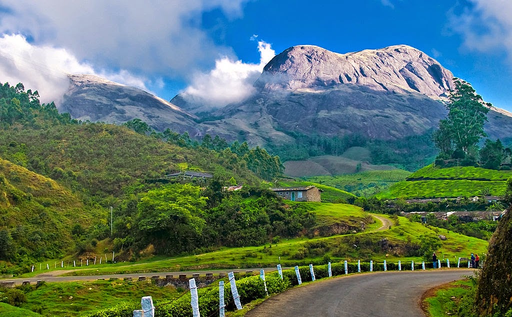 10 Best Backpacking Destinations in India | Tea plantation, Munnar, India