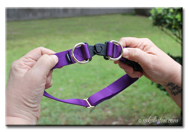 This is the ingenious Break-Away feature of the PetSafe KeepSafe collar