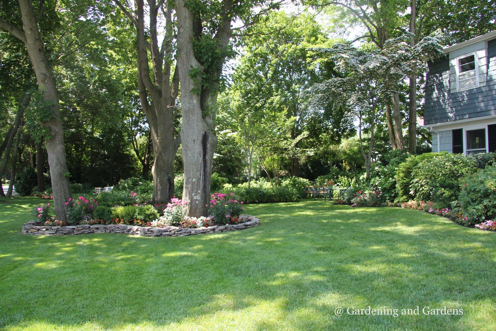 Garden Ideas Around Trees Design Within Reach