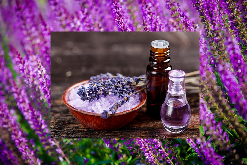 Aromatherapy Essential Oils for Prompt Relief on Lower Back Pain or Sciatica 6