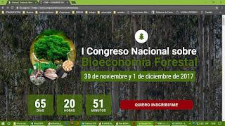 https://www.congresobioeconomiaforestal.es/