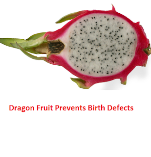 Dragon Fruit Prevents Birth Defects