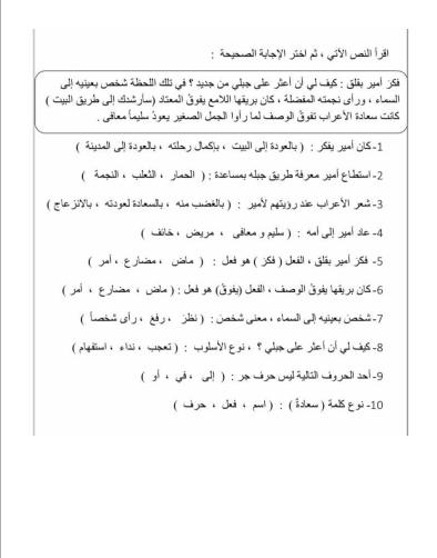 ورقة عمل مراجعة في اللغة العربية للصف الرابع