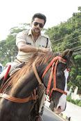 Suriya photos from Singam 3 movie-thumbnail-16