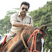Suriya photos from Singam 3 movie-mini-thumb-16