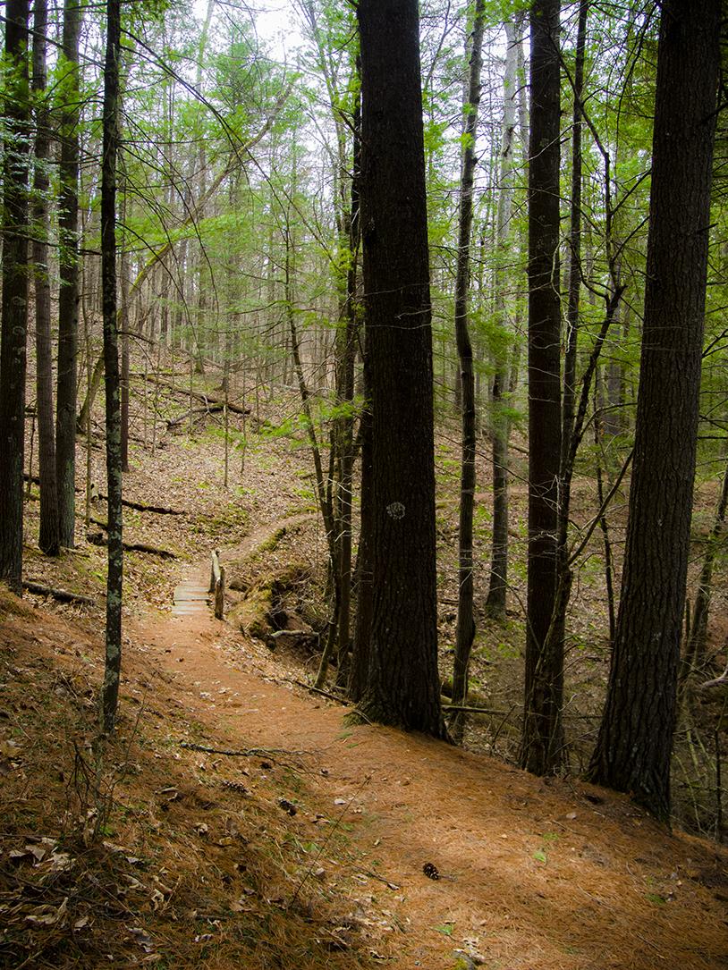 Mount pisgah state park is in the scenic endless mountains region of pennsylvania's northern tier. Wisconsin Explorer Hiking The Hemlock Trail At Mt Pisgah Hemlock Hardwoods Sna