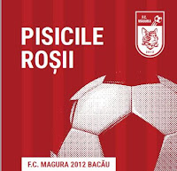 FC Magura 2012 Bacau