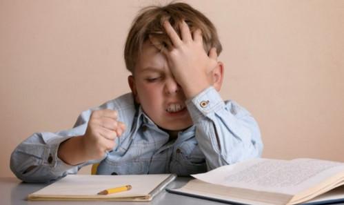 Tipe Belajar Efektif dan Efisien
