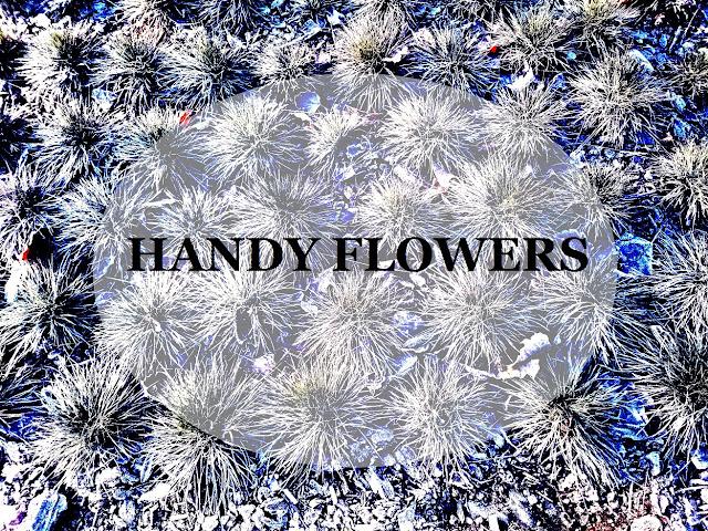 handy flowers