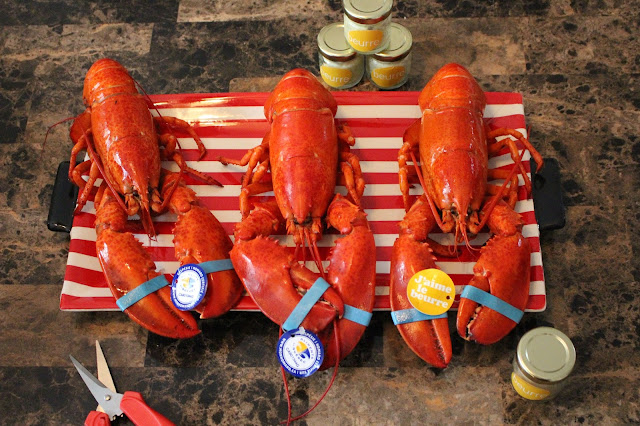 Mon homard vient de la Gaspésie...