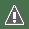 Anak Kucing yang Menyerupai Macan