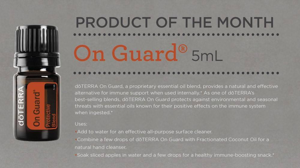 Product of the Month - OnGuard