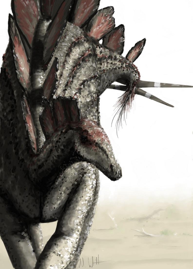 Mark Witton.com Blog: Overexposure of Stegosaurus, but in ...