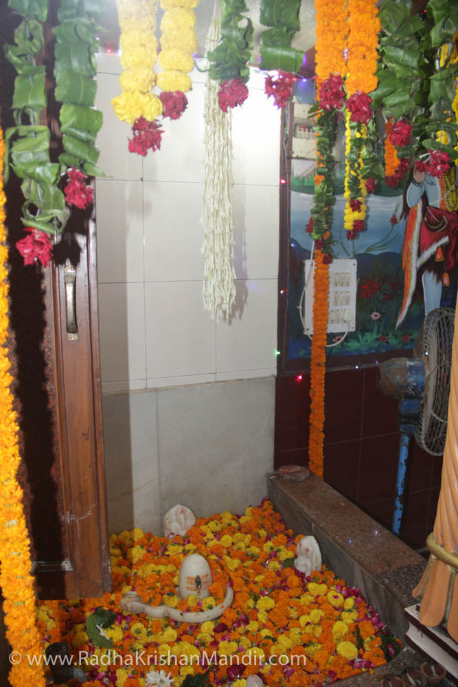 the radha krsna temple