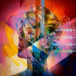 Download P!nk - Hurts 2B Human (2019)
