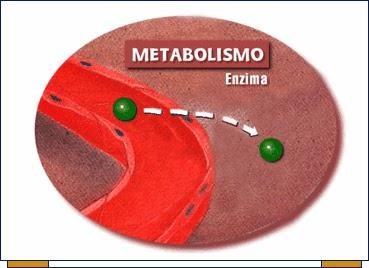 Necesita intensificar su Pérdida de peso ceto Es esencial aprender esto primero