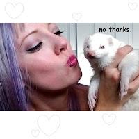 bored ferret love hug dook funny lip rings collar naughty dom sub pet