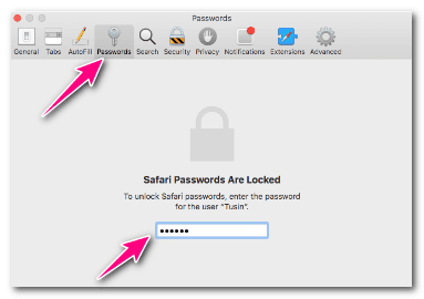 Find Saved Passwords In Safari Browser