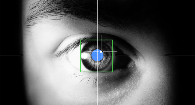 web usability design jacob nielsen eyetracking