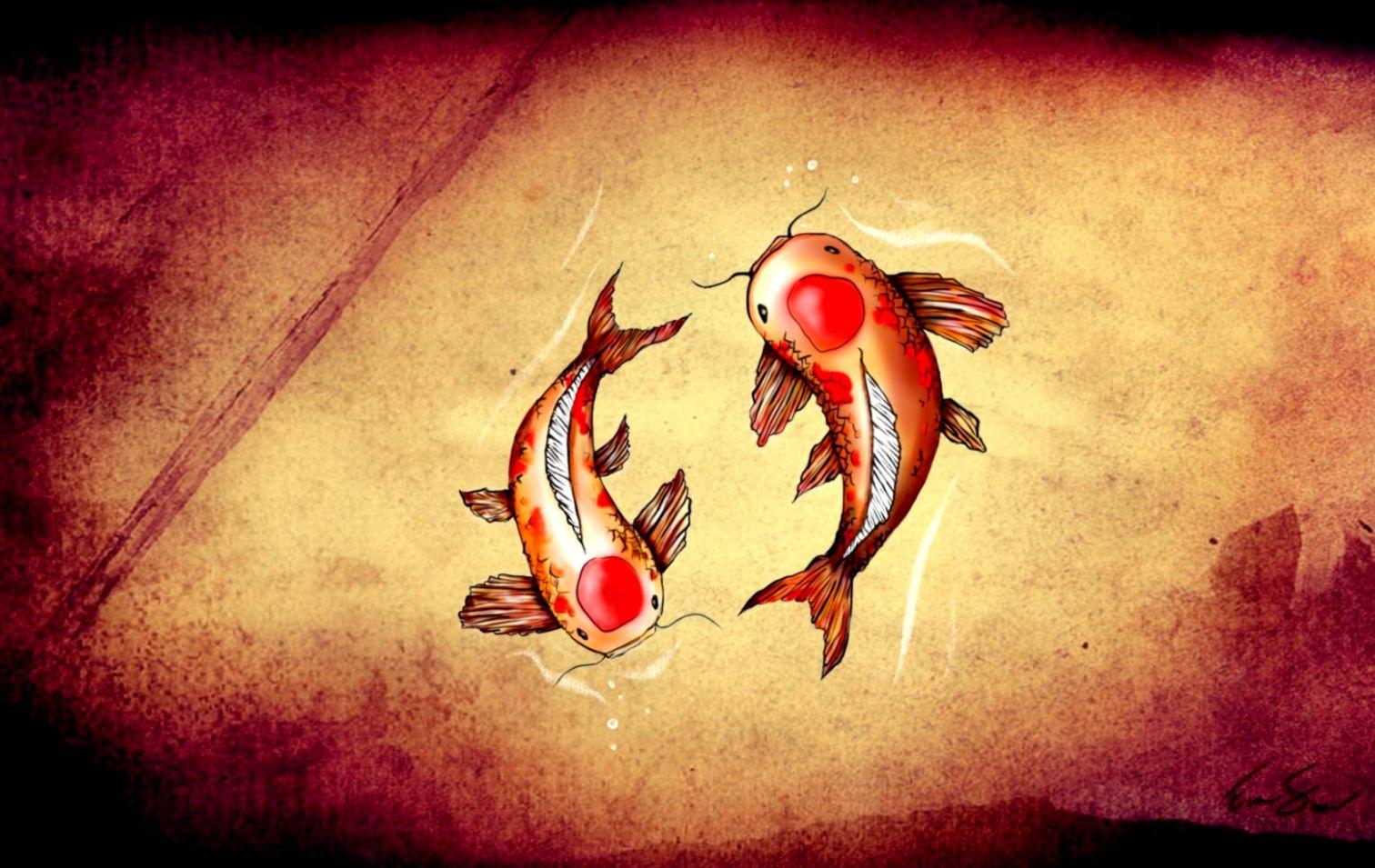 Drawing Koi Fish Art Hd Wallpaper Wallpapers Awards