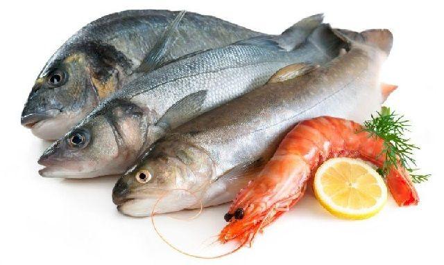 Nilai Gizi Ikan